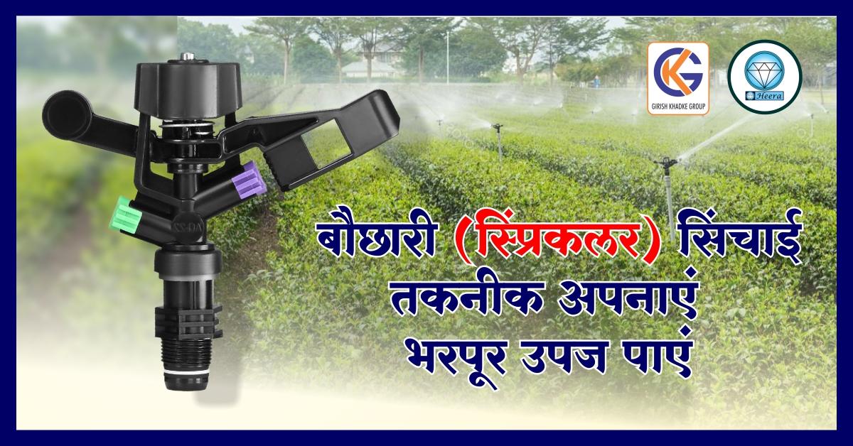 Adopt Shower (Sprinkler) irrigation techniques – get bumper crop