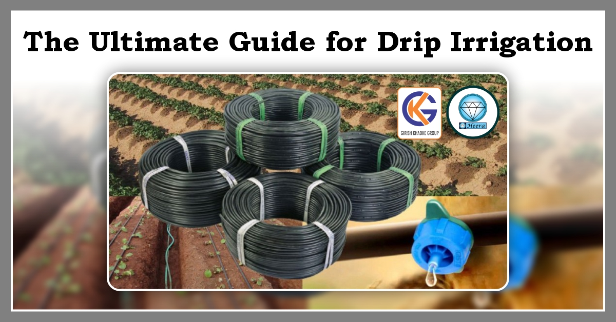 ulimate guide for drip irrigation