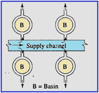 Basin Irrigation Method