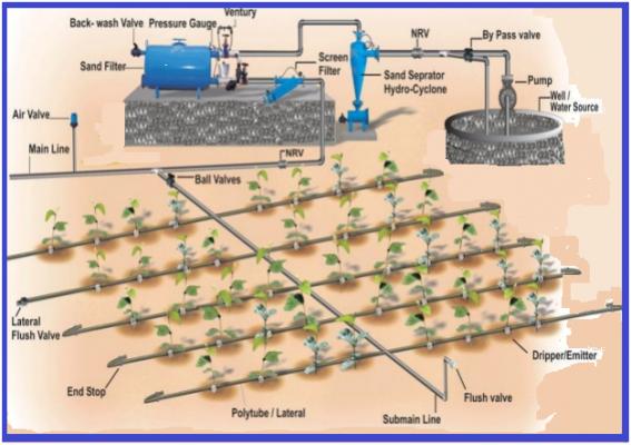 Irrigation System Drip